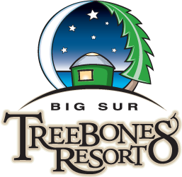 Treebones Resort